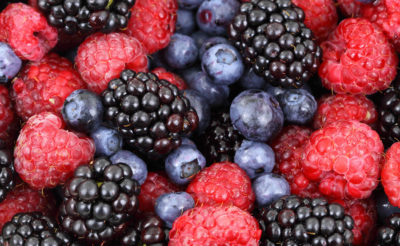 natural choice home foods berries